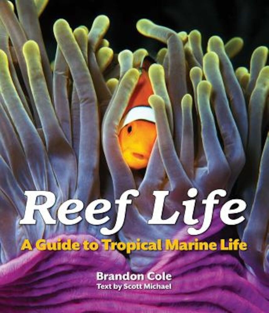 Reef Life: A Guide to Tropical Marine Life, Paperback