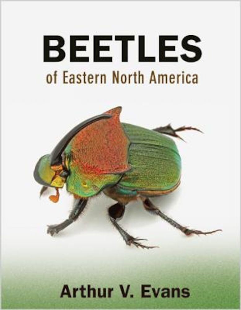 Beetles of Eastern North America, Paperback