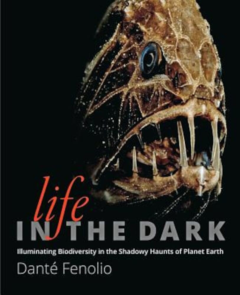 Life in the Dark: Illuminating Biodiversity in the Shadowy Haunts of Planet Earth, Hardcover