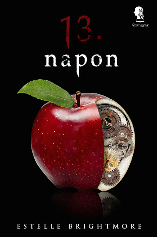 13. napon (eBook)