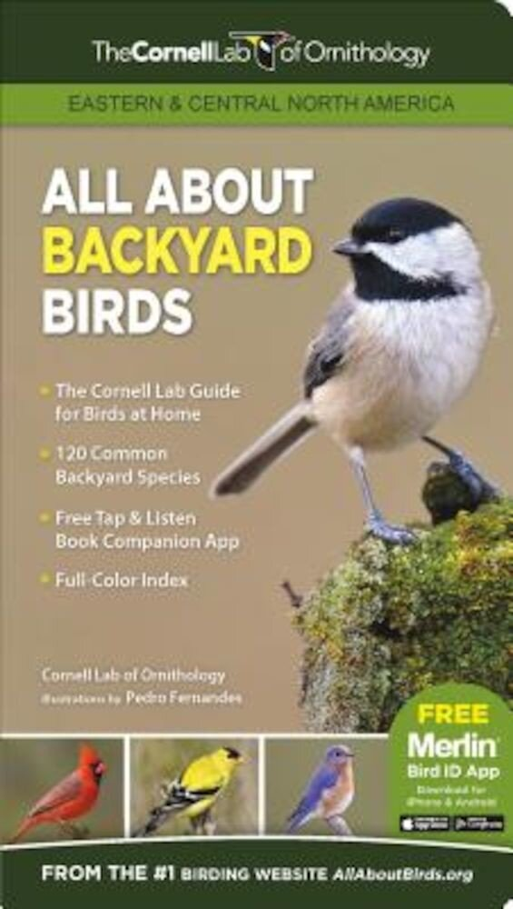 All about Backyard Birds: Eastern & Central North America, Paperback
