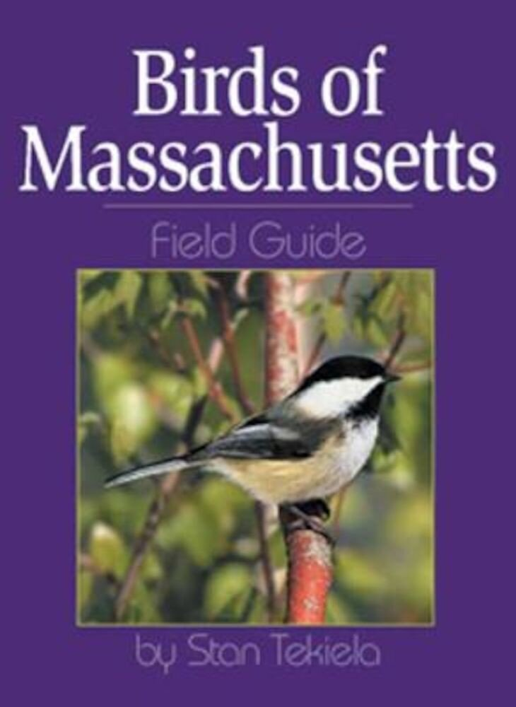 Birds of Massachusetts Field Guide, Paperback