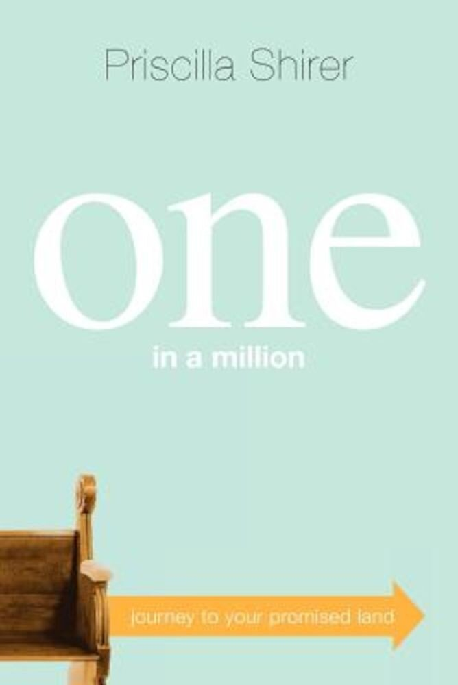 One in a Million: Journey to Your Promised Land, Paperback