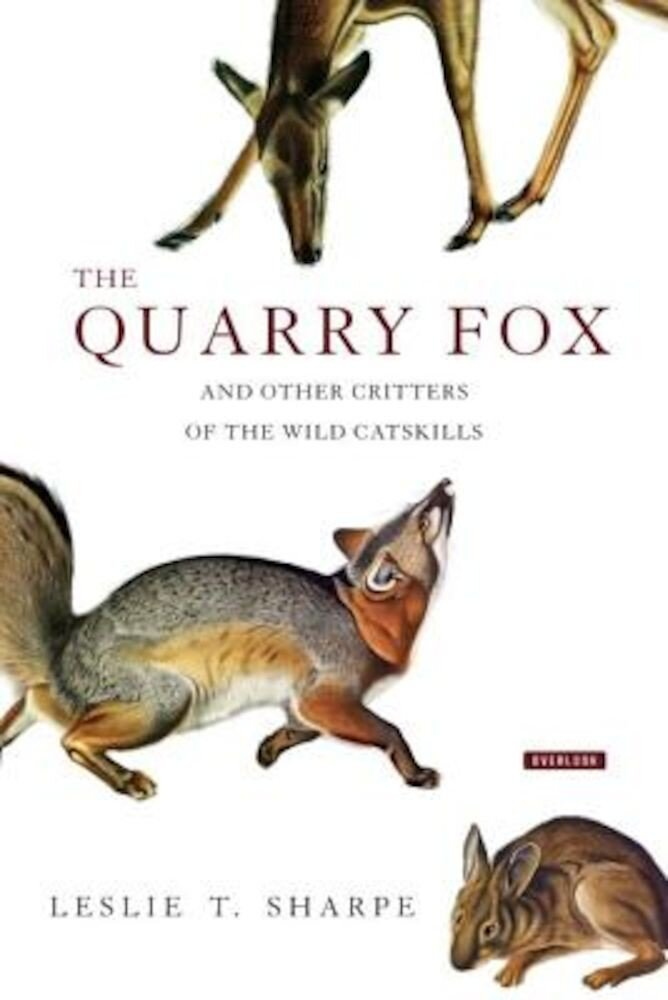 The Quarry Fox: And Other Critters of the Wild Catskills, Hardcover