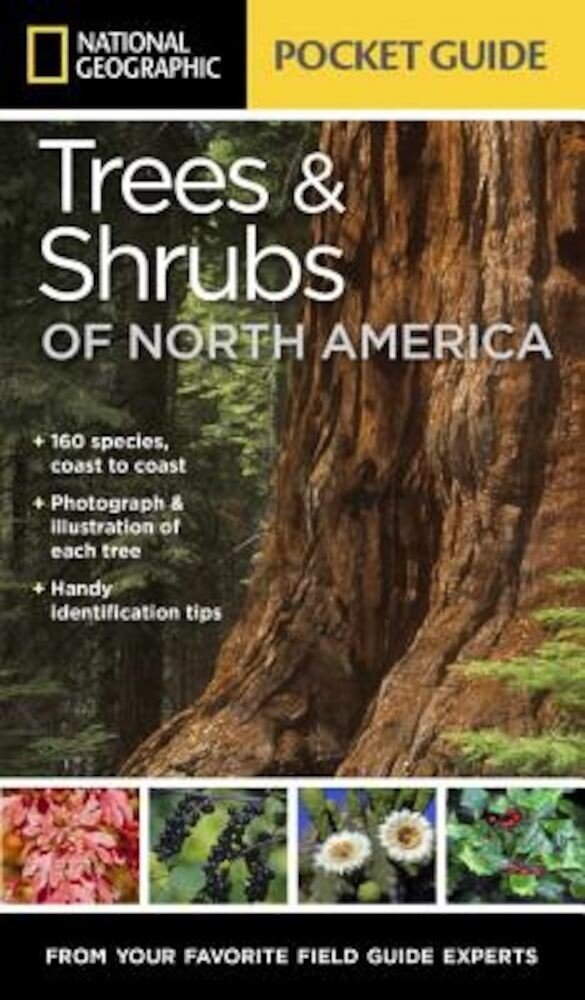 National Geographic Pocket Guide to Trees and Shrubs of North America, Paperback