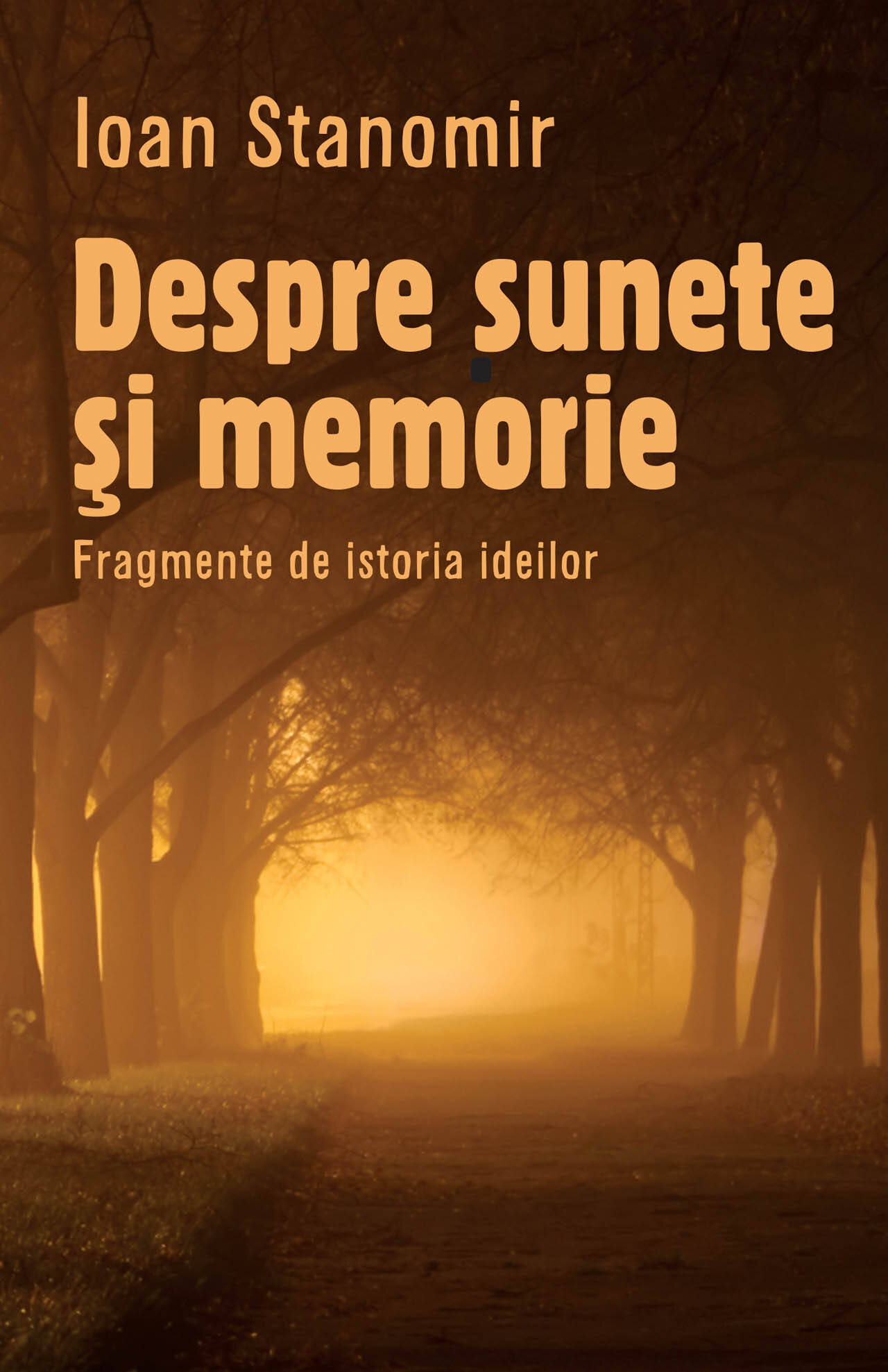 Despre sunete si memorie. Fragmente de istoria ideilor (eBook)