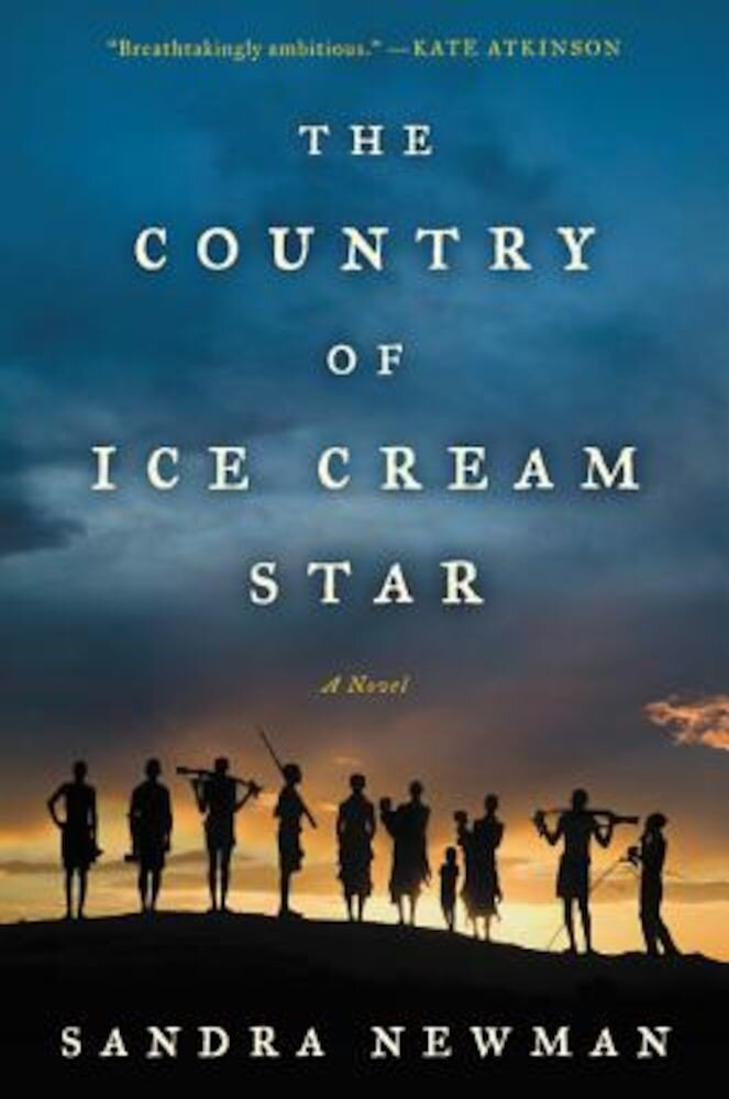 The Country of Ice Cream Star, Paperback