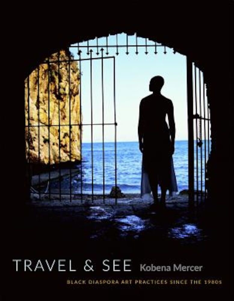 Travel & See: Black Diaspora Art Practices Since the 1980s, Paperback