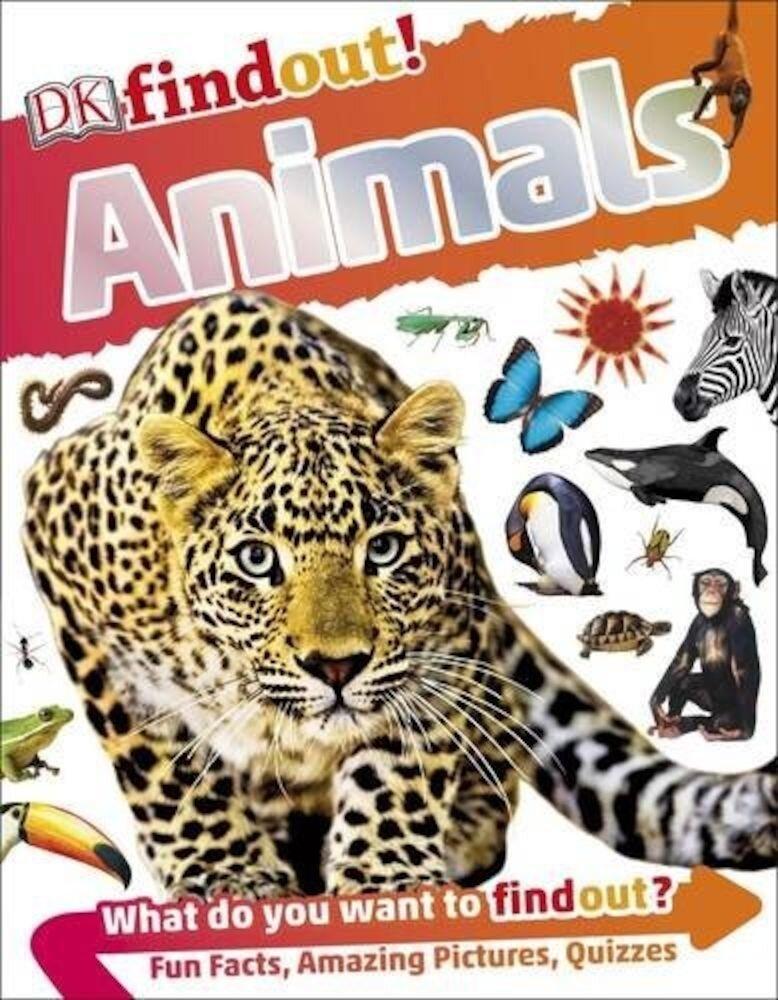 DK Find Out! Animals