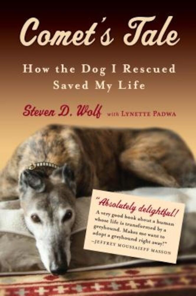 Comet's Tale: How the Dog I Rescued Saved My Life, Paperback