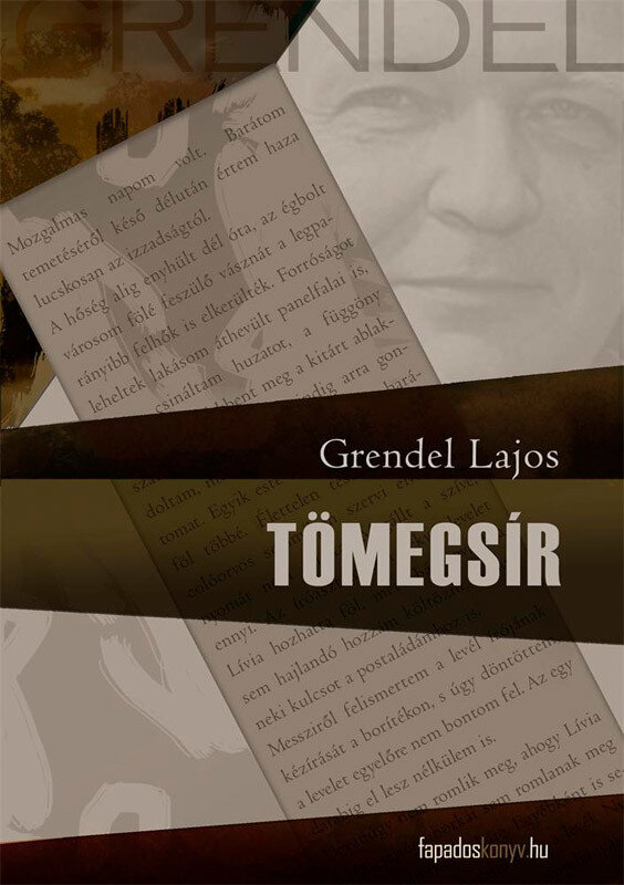 Tomegsir (eBook)