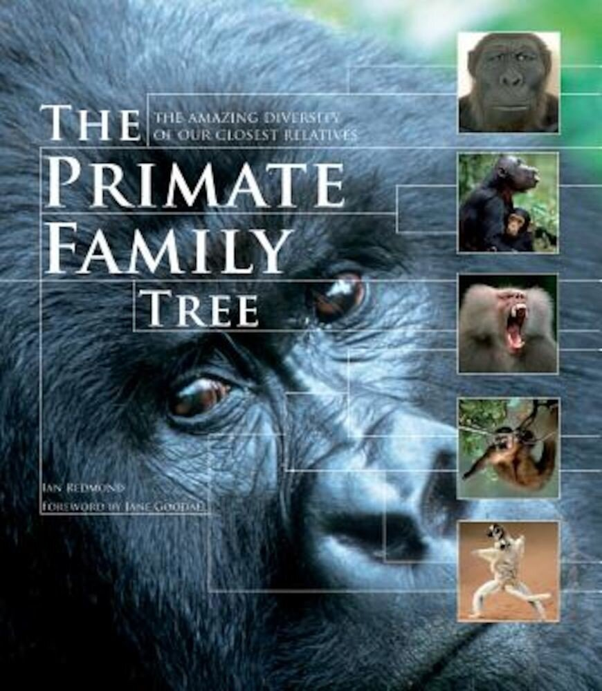 The Primate Family Tree: The Amazing Diversity of Our Closest Relatives, Paperback