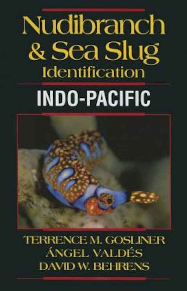 Nudibranch & Sea Slug Identification: Indo-Pacific, Paperback