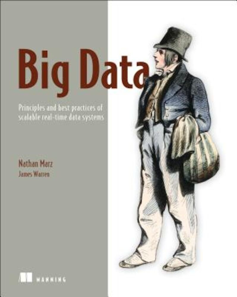 Big Data: Principles and Best Practices of Scalable Realtime Data Systems, Paperback