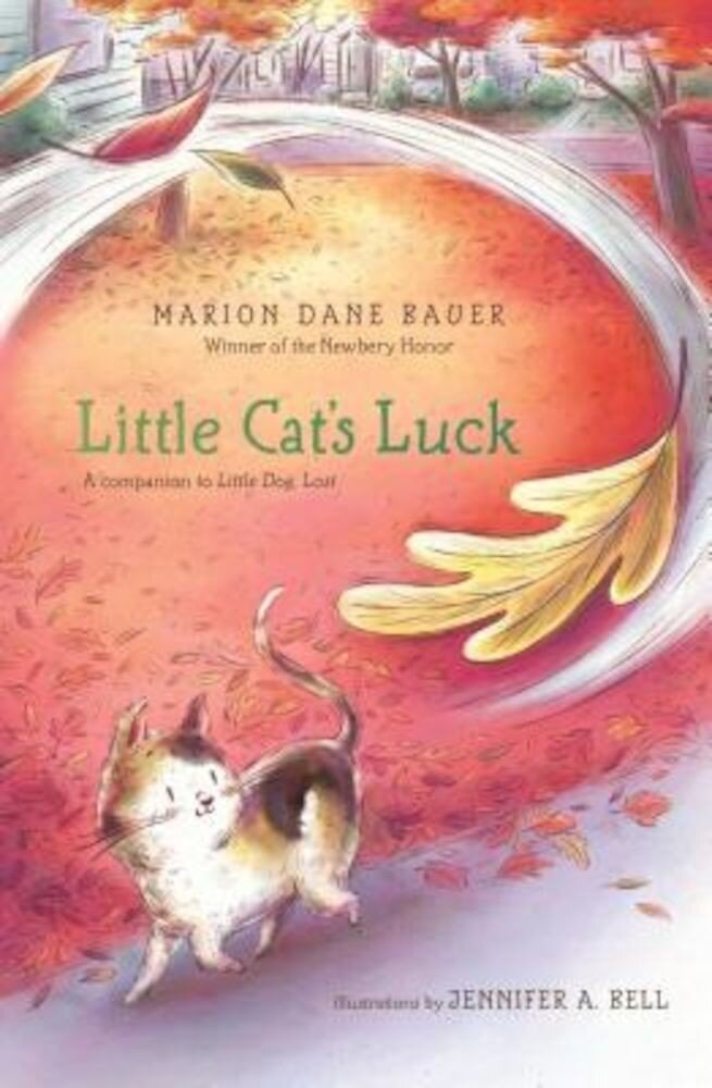 Little Cat's Luck, Paperback