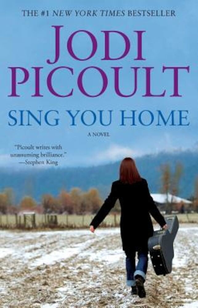 Sing You Home, Paperback