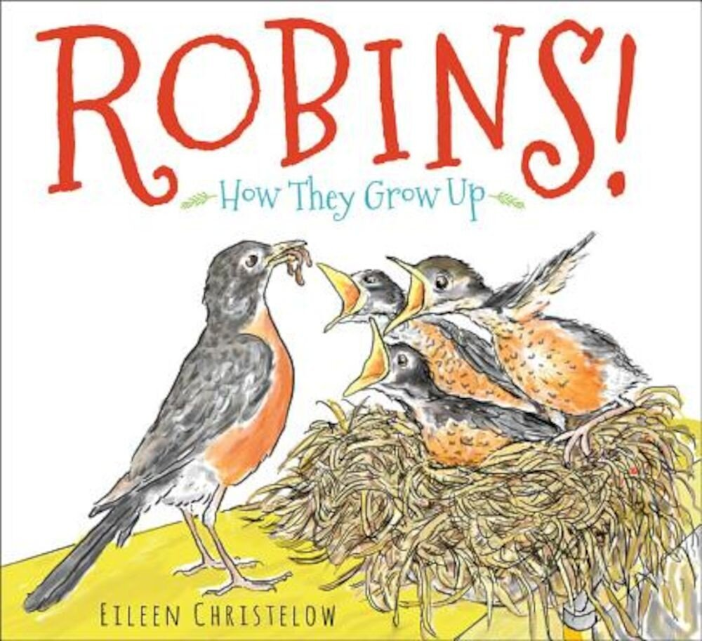 Robins!: How They Grow Up, Hardcover