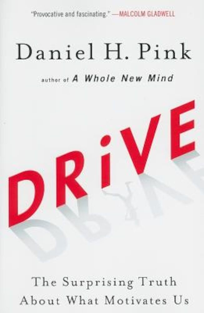 Drive: The Surprising Truth about What Motivates Us, Paperback