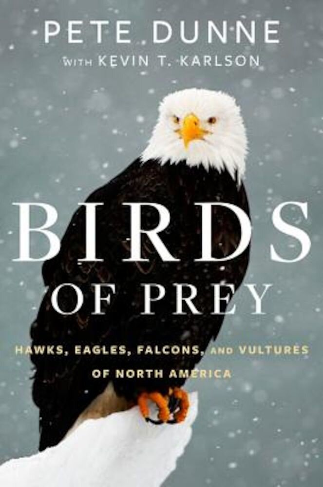 Birds of Prey: Hawks, Eagles, Falcons, and Vultures of North America, Hardcover