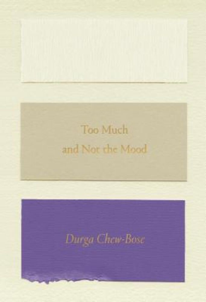 Too Much and Not the Mood: Essays, Paperback