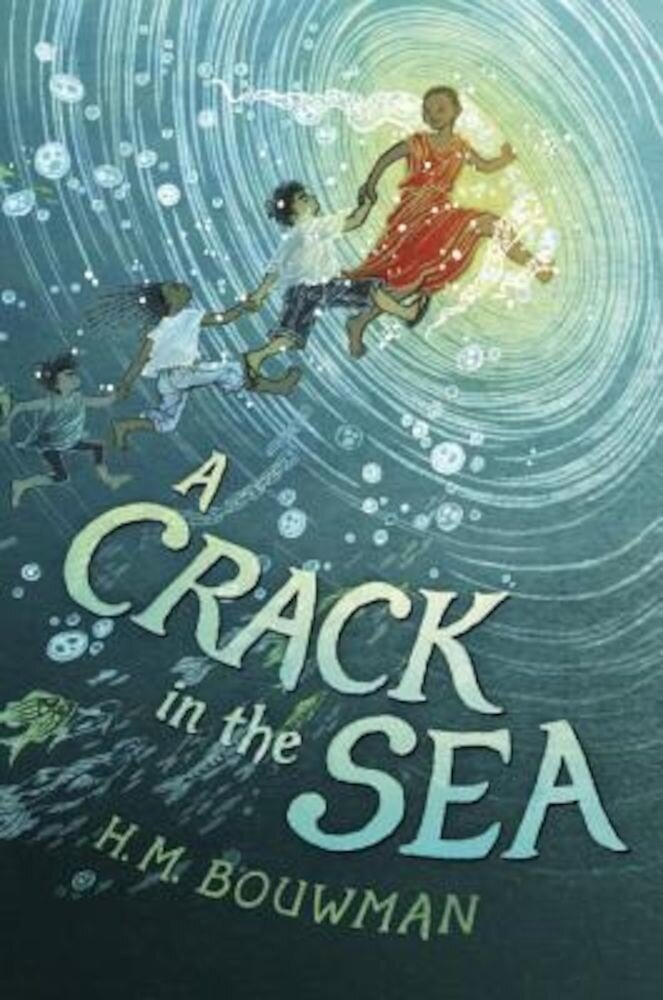 A Crack in the Sea, Hardcover