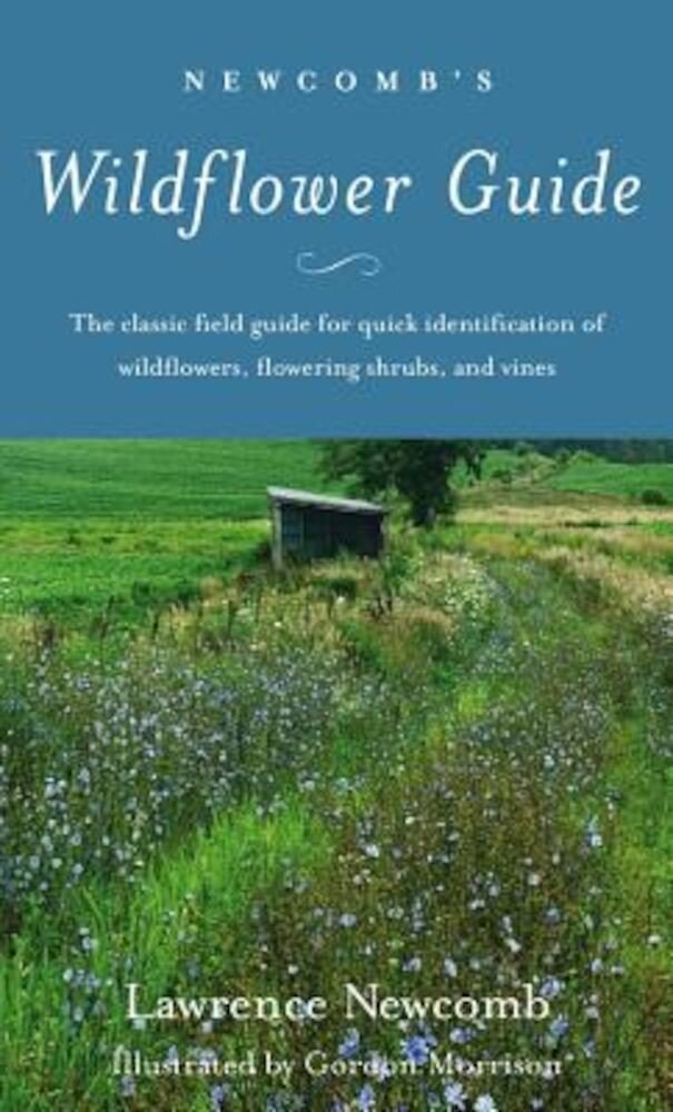 Newcomb's Wildflower Guide, Paperback