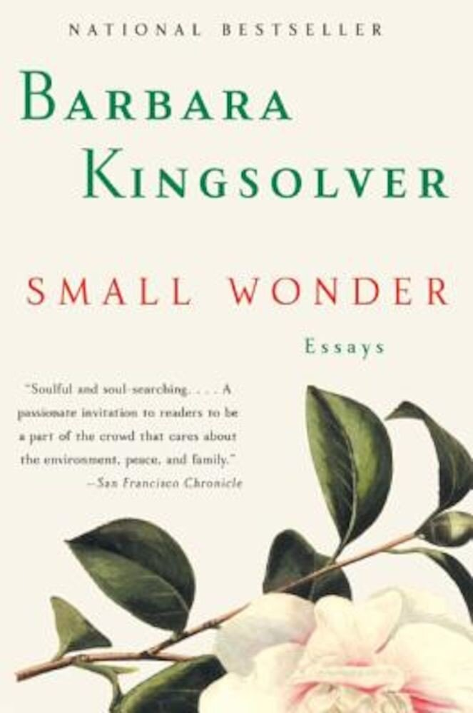 Small Wonder: Essays, Paperback