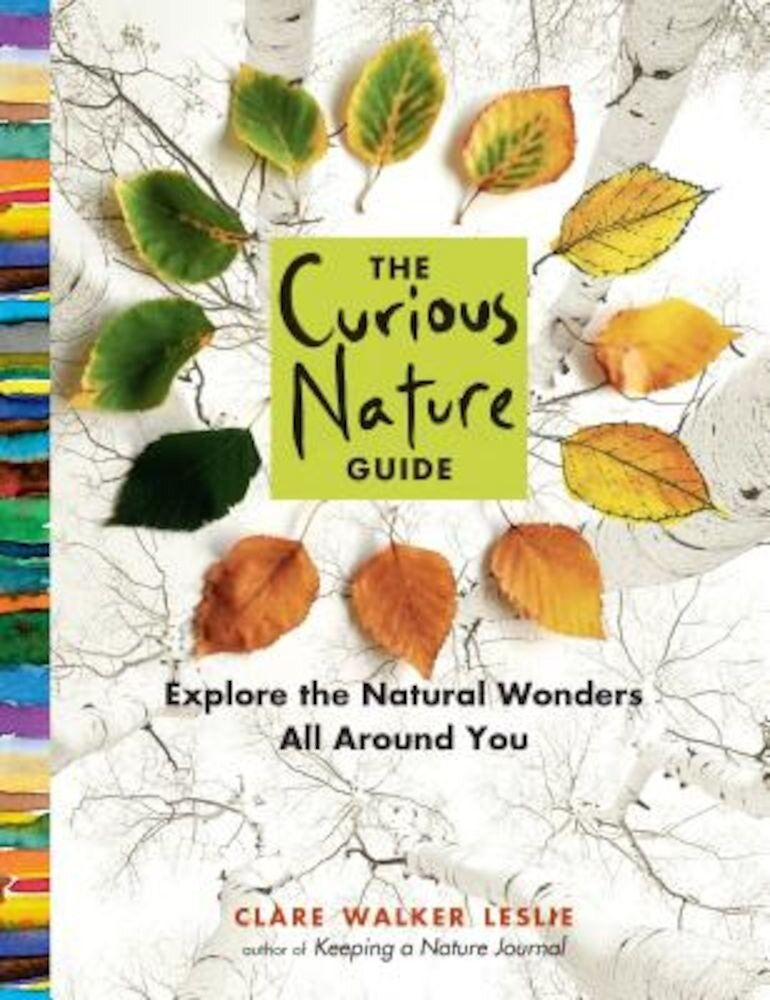 The Curious Nature Guide: Explore the Natural Wonders All Around You, Paperback