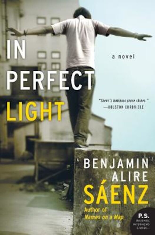 In Perfect Light, Paperback