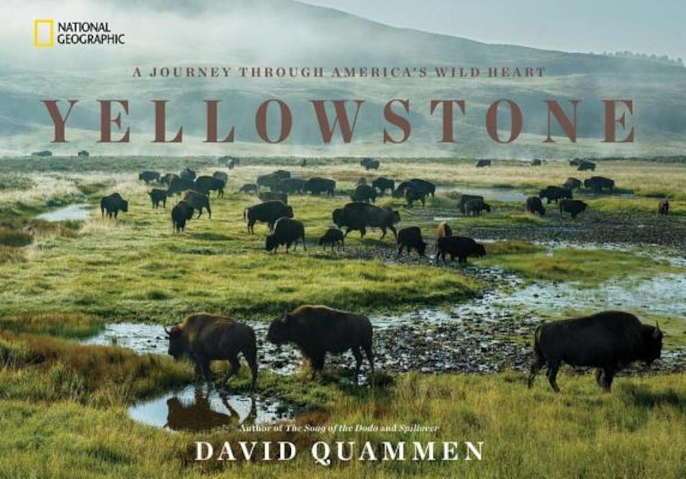 Yellowstone: A Journey Through America's Wild Heart, Hardcover