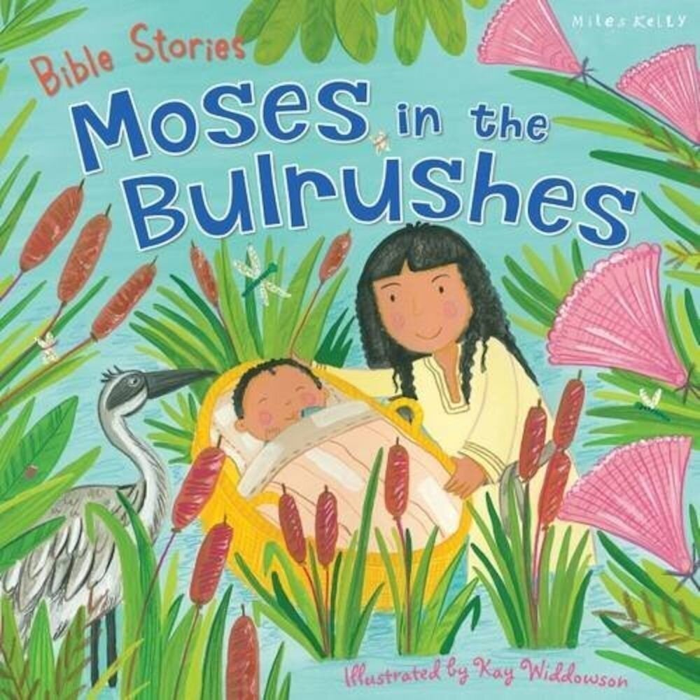 C 24 Bible Stories Moses In Bulrush
