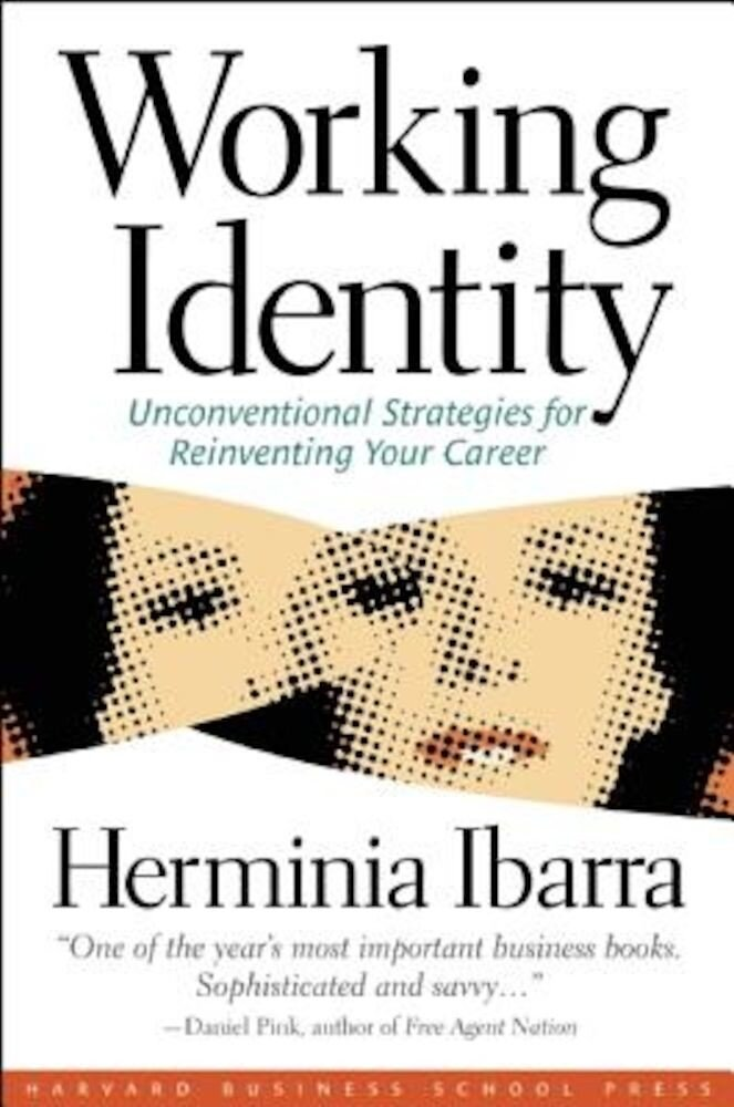 Working Identity: Unconventional Strategies for Reinventing Your Career, Paperback
