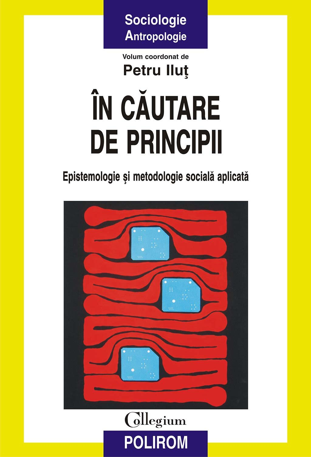 In cautare de principii. Epistemologie si metodologie sociala aplicata PDF (Download eBook)