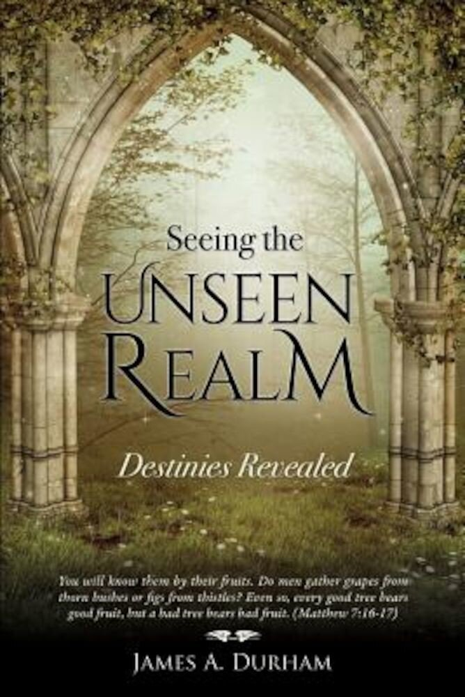 Seeing the Unseen Realm, Paperback