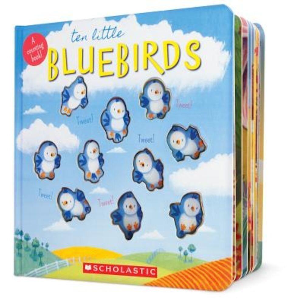 Ten Little Bluebirds: A Counting Book!, Hardcover