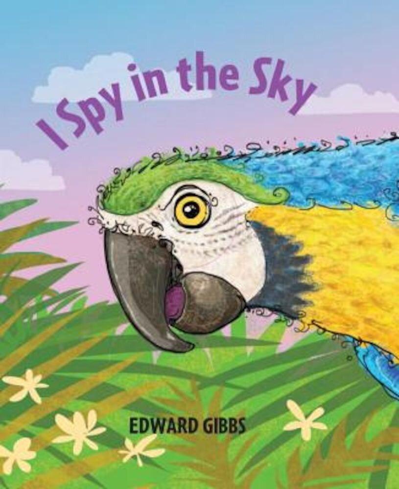 I Spy in the Sky, Hardcover