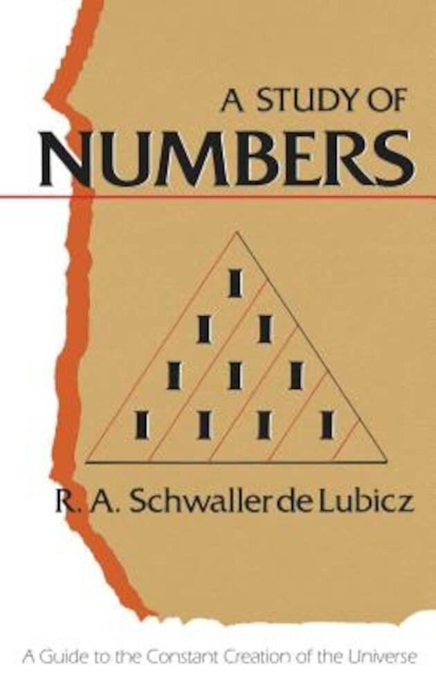 Study of Numbers, Paperback