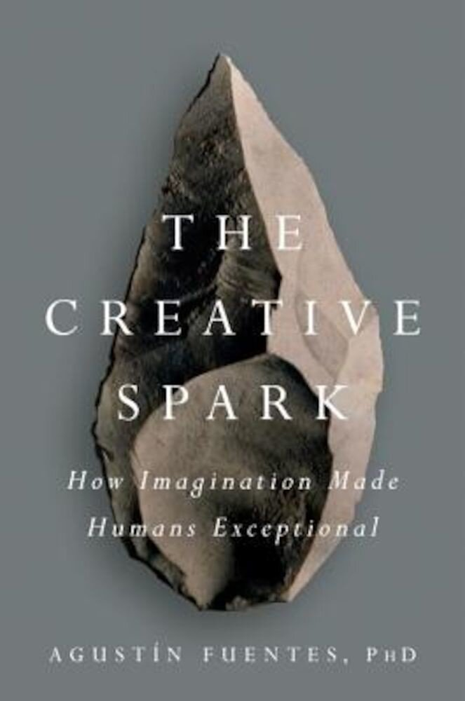 The Creative Spark: How Imagination Made Humans Exceptional, Hardcover