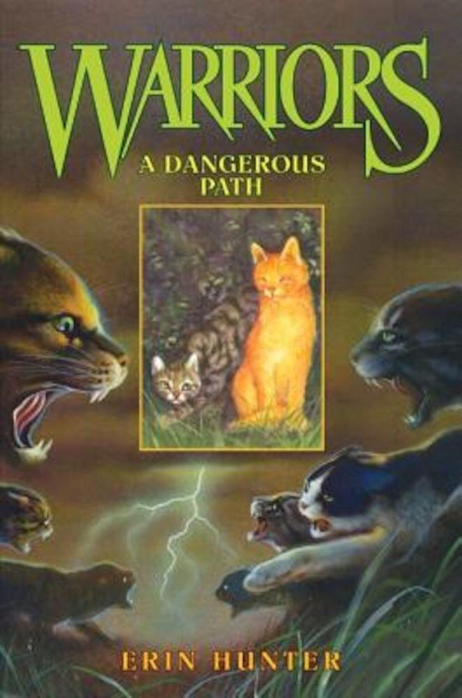 A Dangerous Path, Hardcover