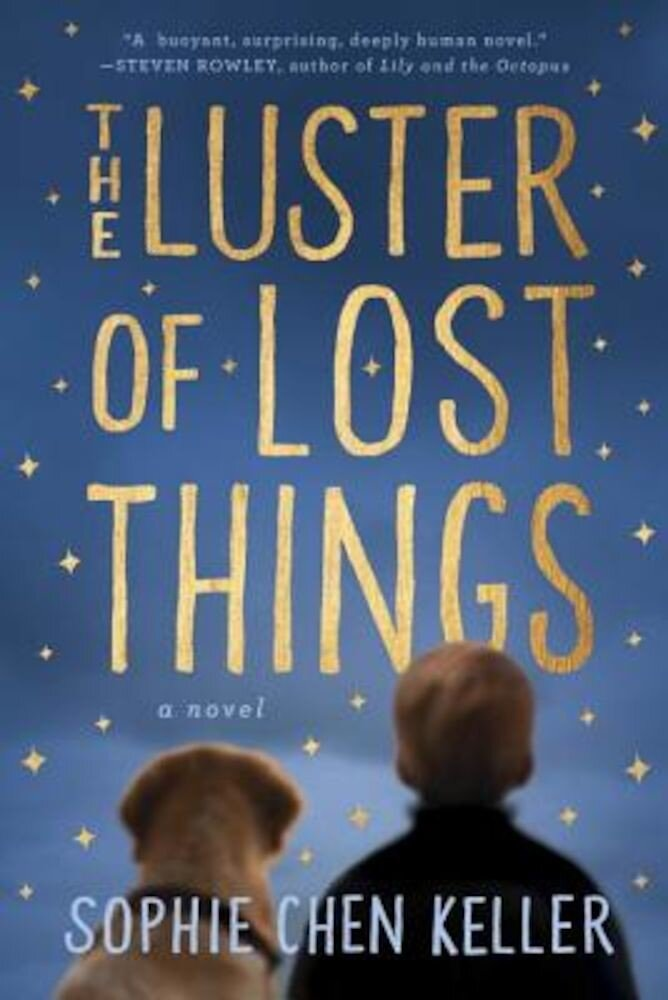 The Luster of Lost Things, Paperback