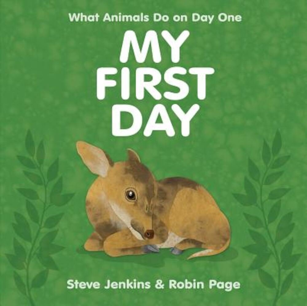 My First Day, Hardcover