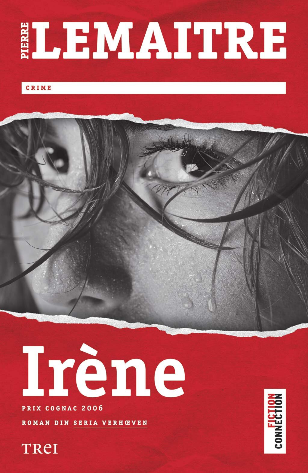 Irene. Roman din seria Verhoeven PDF (Download eBook)