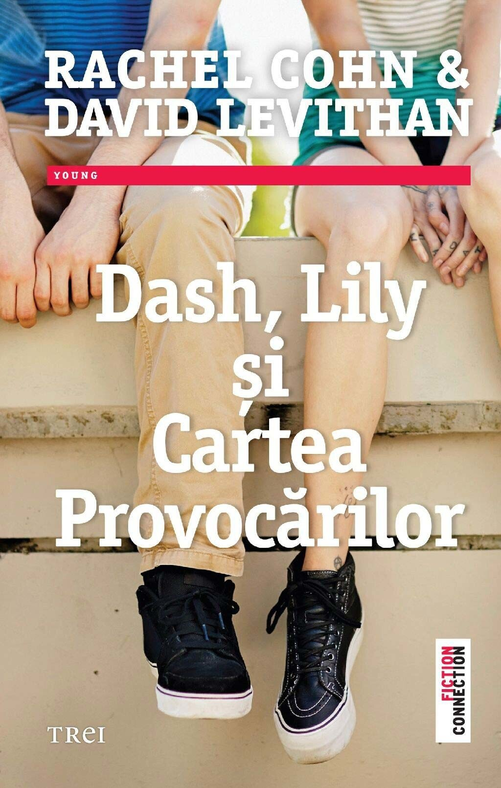 Dash, Lily si Cartea Provocarilor PDF (Download eBook)