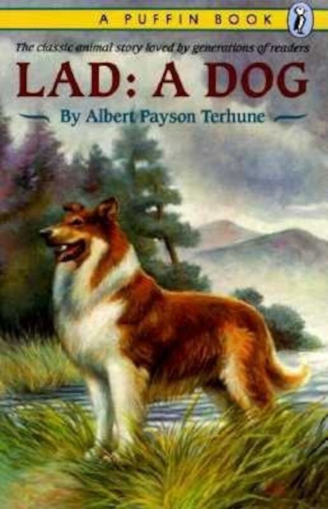 Lad: A Dog, Paperback