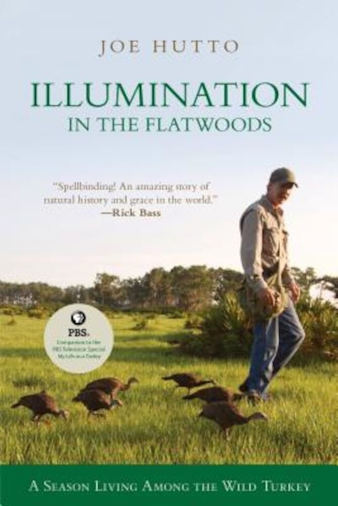 Illumination in the Flatwoods: A Season with the Wild Turkey, Paperback