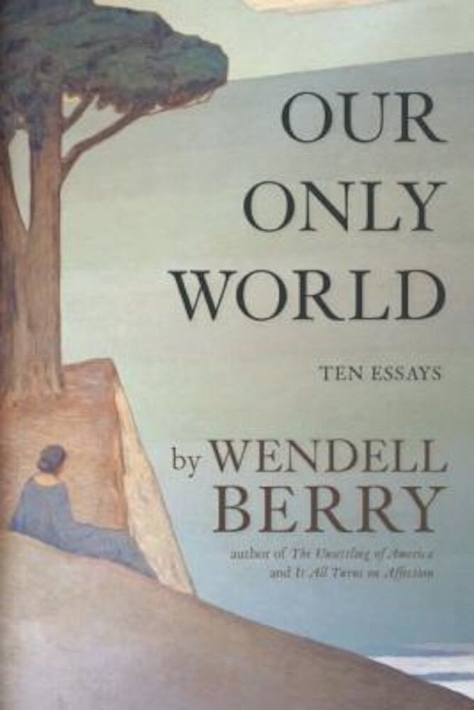 Our Only World: Ten Essays, Paperback