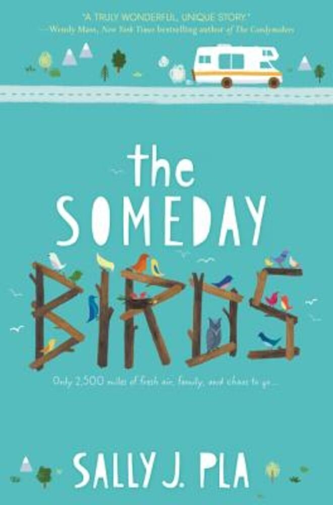 The Someday Birds, Hardcover
