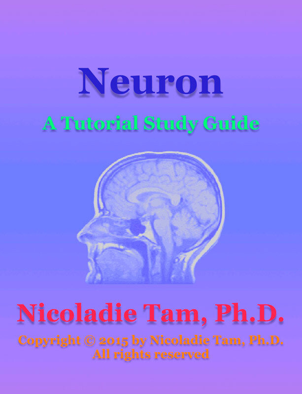 Neuron: A Tutorial Study Guide (eBook)
