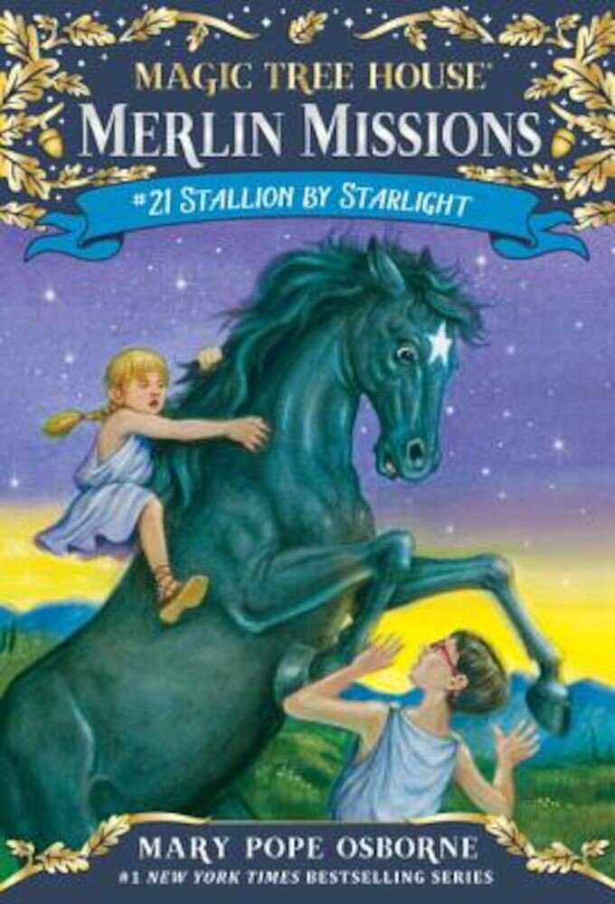 Stallion by Starlight, Paperback