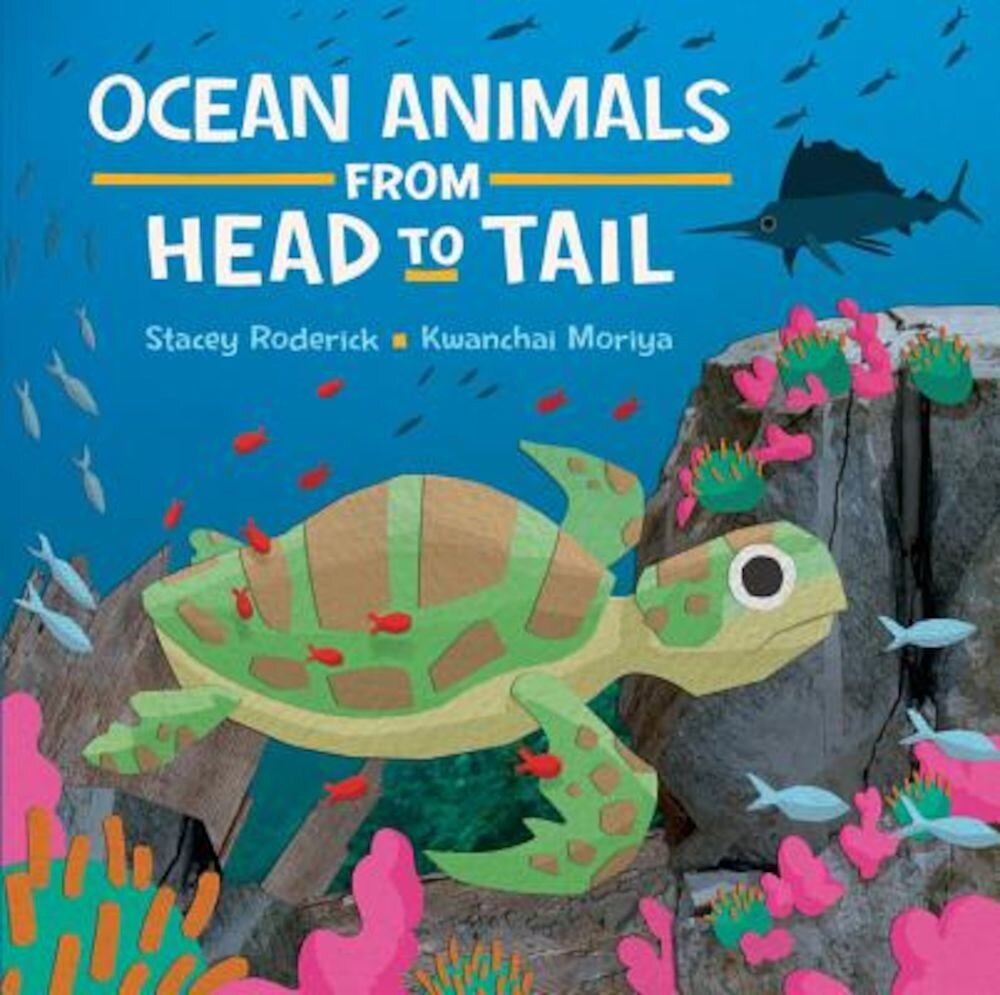 Ocean Animals from Head to Tail, Hardcover